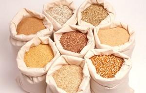 cereals grains1